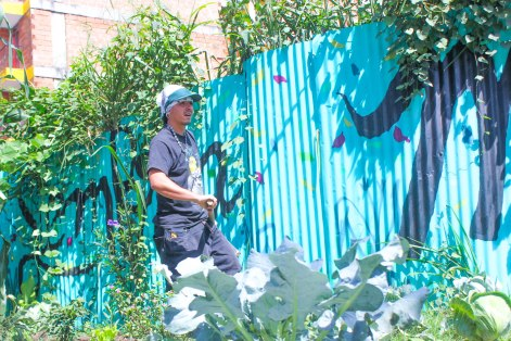 "Luis Fernando Álvarez, who goes by the rapper name ""A.K.A.,"" works in a community garden his organization AgroArte has established in Comuna 13."